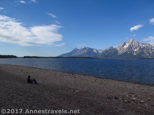 Perspective: Enjoying views of the Tetons across Jackson Lake from near the Lakeshore Trail, Grand Teton National Park, Wyoming