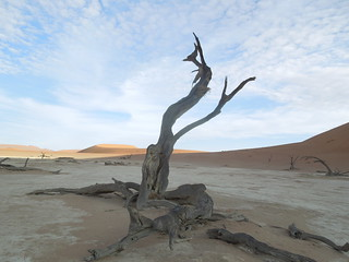 2017-03-07 Sussovlei Sunrise and Deadvlei 80