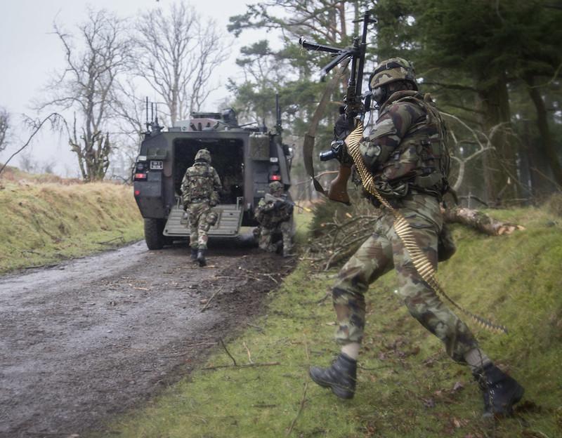 Armée Irlandaise/Irish Armed Forces - Page 2 32463704284_0119a95ec5_c