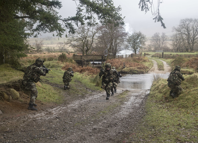 Armée Irlandaise/Irish Armed Forces - Page 2 33150936412_b72f868454_c