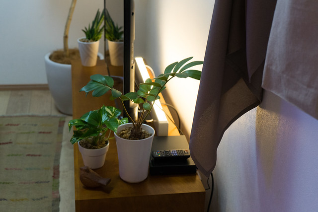 LINK STYLE LED+スマホアプリ-24.jpg