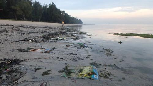 Trash on Changi shore