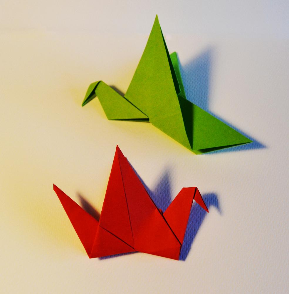 240 e 241- flapping birds