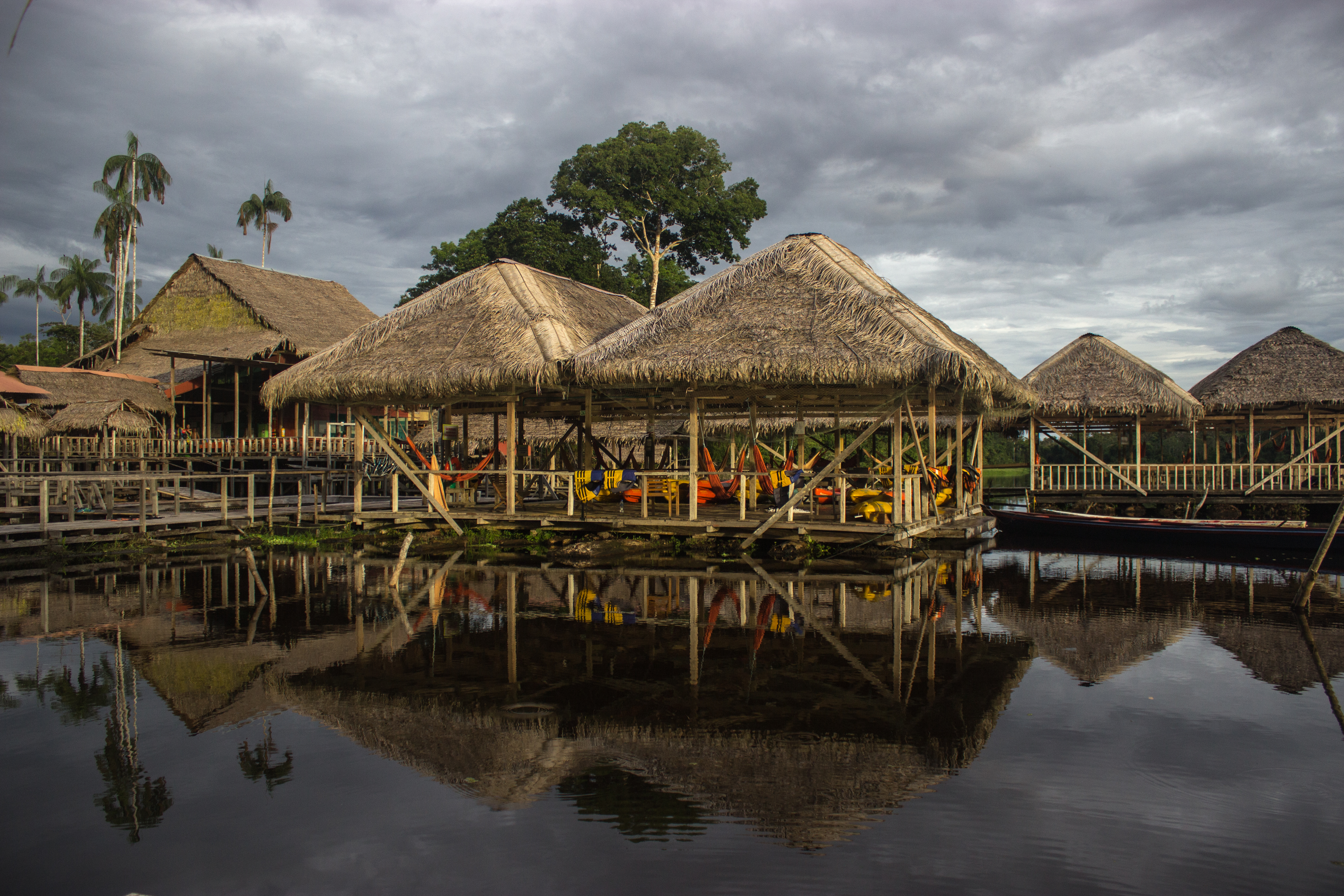 The Colombian Amazon