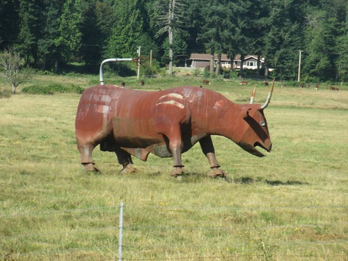 Bull sculpture along Highway 101 near Olympia, WA. | by theslowlane
