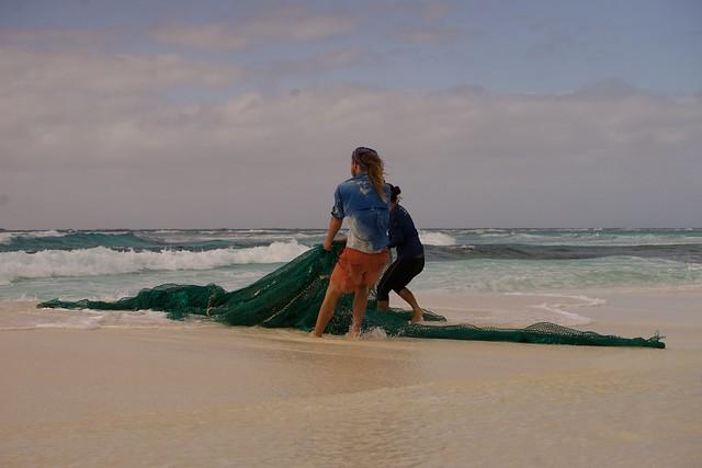 Marine Debris on Kure Atoll