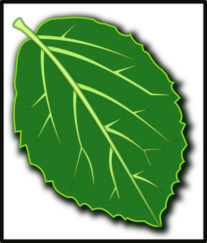 Viburnum Leaf Icon | by GammaBlog