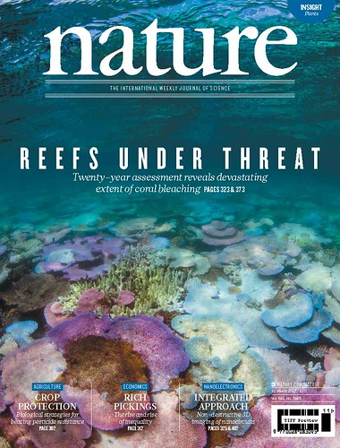Reefs under threat