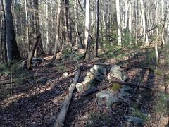 Enigmatic Rock Piles