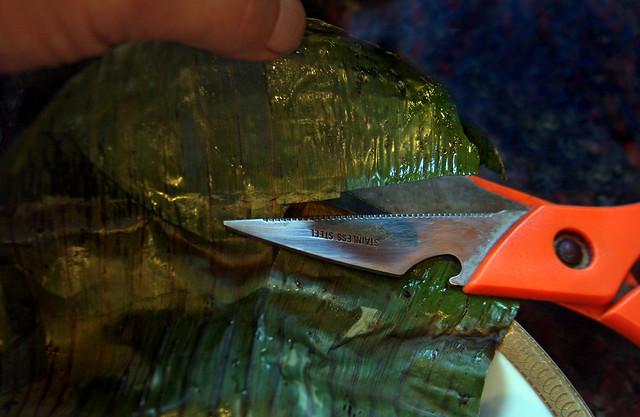 Salmon a la hoja de bananero con salsa de maracuya (38)