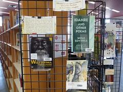 Expositions de poètes africainEs, Bibliothèque Arts et Lettres, site Tanneurs, Tours, 13 mars 2017.