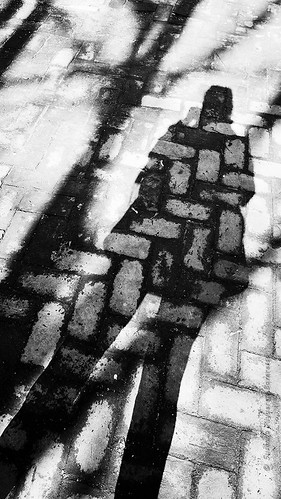 Brick Shadows