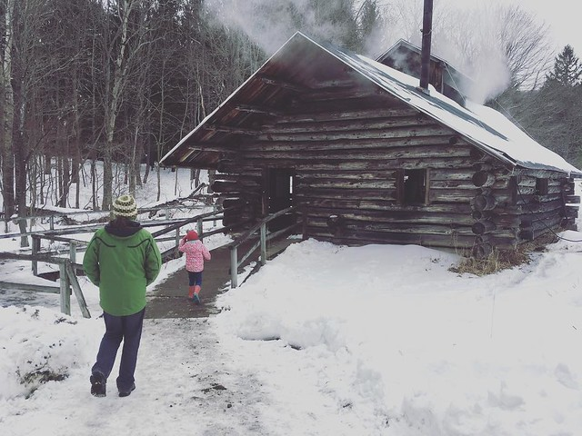 Running to the sugar shack!