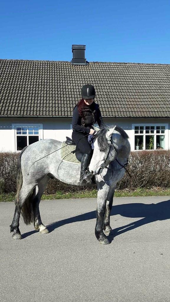 En helg med kontraster innehöll lyckligtvis några minuter på hästryggen!