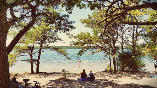 Cape cod rail trail beach.  Summer fun in New England | by The Shared Experience
