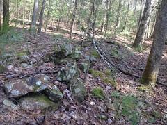 Rock Wall on Alec Mountain