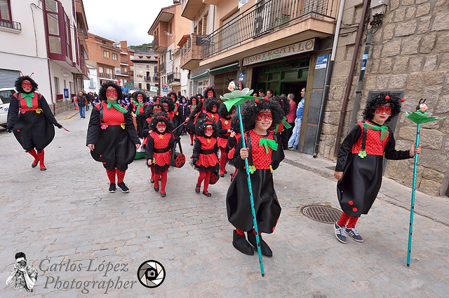 Carnaval Hoyo 14