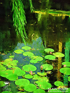 Almost a Monet.... !! | by ruebreteuil