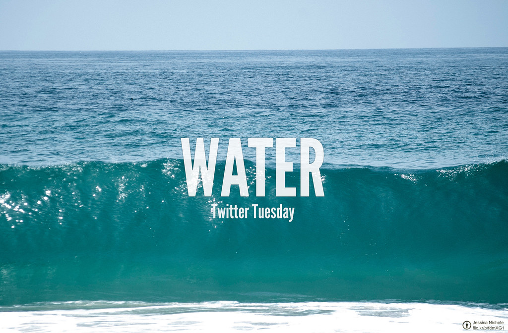 Twitter Tuesday: Water | Get r...