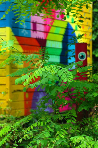 Petite maison en bois dans les bois Edgard V Flickr # Petit Trou Dans Le Bois