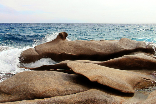 Many sea monster shapes sculptured in this rock.