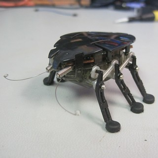 Hexbug Delta in need of a new power switch | by Low Voltage Labs