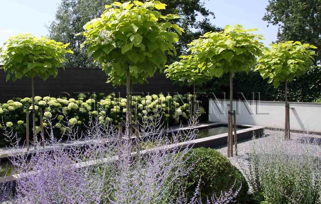 Tuinarchitect Villatuin Moderne Tuin Bij Villa Zuid Hollan Flickr