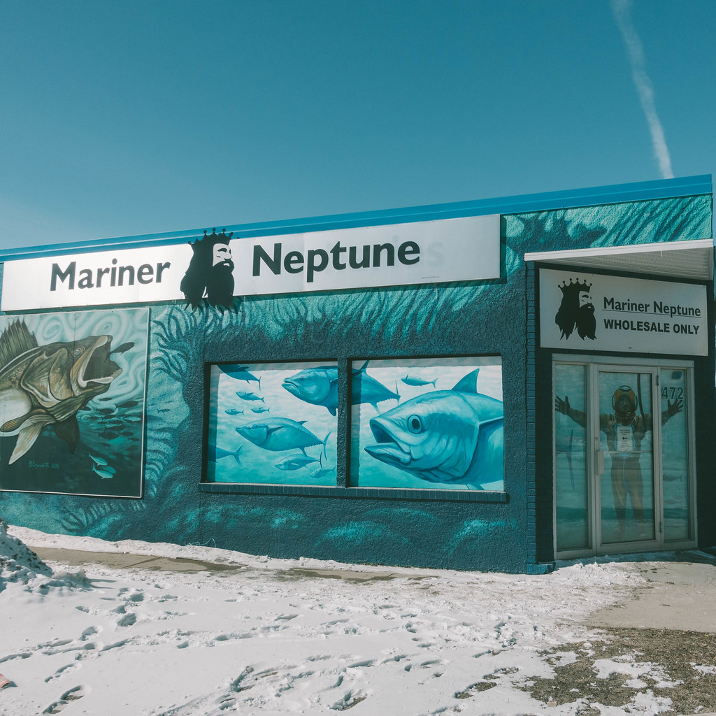 Mariner Neptune