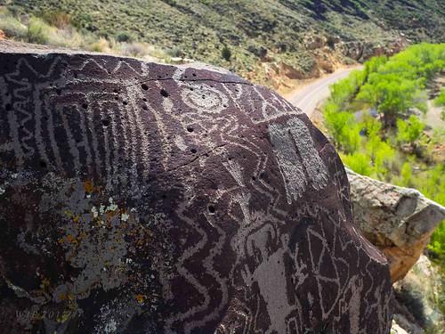 Petroglyphs In Situ