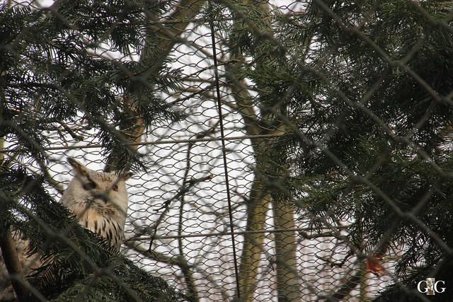 Ausflug Tierpark Friedrichsfelde 05.03.179