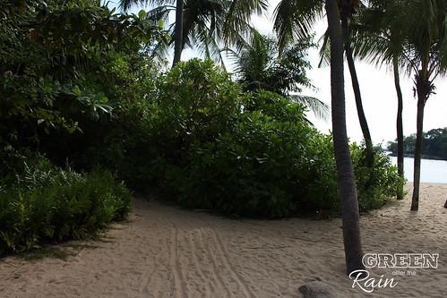 160908i Siloso Beach Sentosa _07