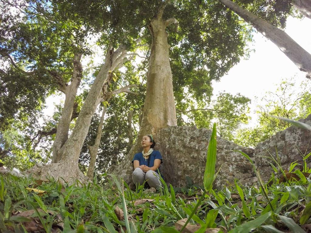 Me at the Royal Botanical Gardens in Peradeniya, Sri Lanka