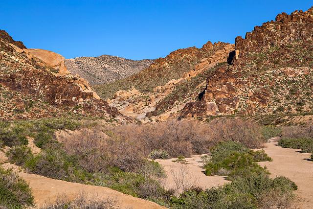 Grapevine Canyon Hike