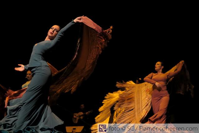 Gala Solidaria Jóvenes Flamencos 2017 de la Fundación Cristina Heeren