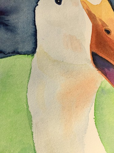 snorrepost duck watercolor aquarel eend