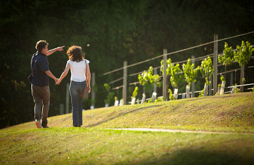 wineries | by Witches Falls Cottages