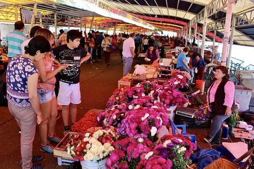 Feria Fluvial