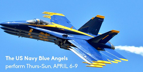 """Sun 'n Fun Fly-In"" with the Blue Angels in Lakeland"
