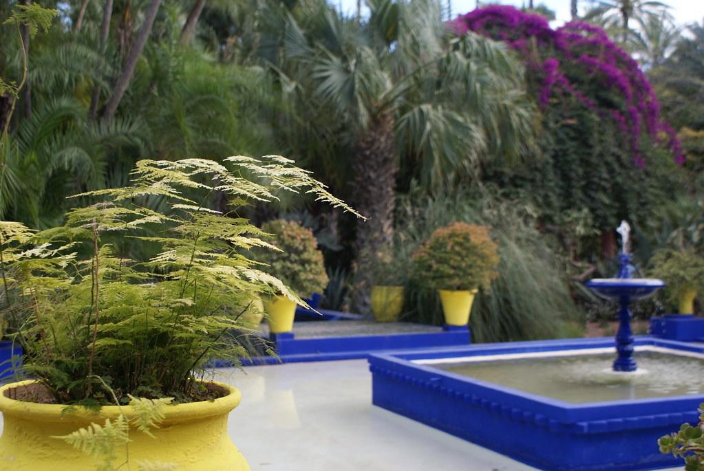 Jardin Majorelle à Marrakech : Fontaine et couleurs spectaculaires entre peinture et végétaux en fleurs.