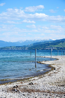 Arbon, Lake Constance | by Rosa's Yummy Yums