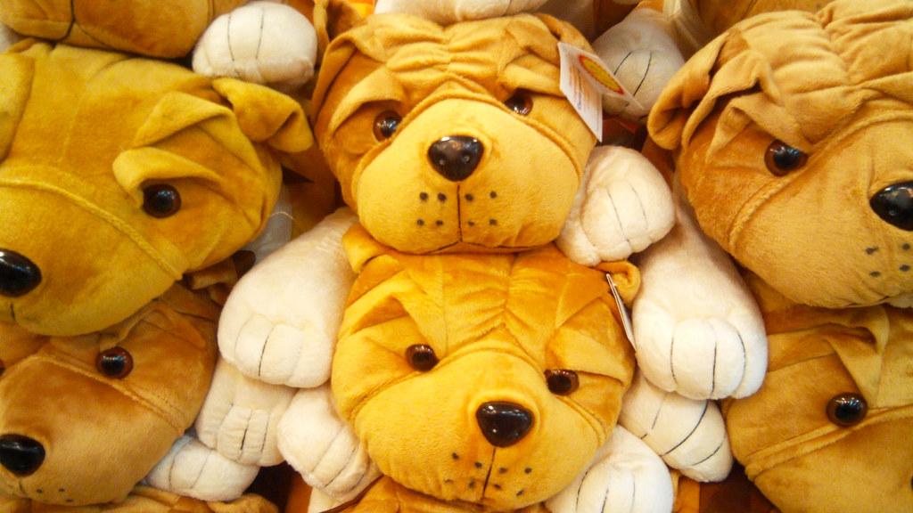 Soft Dogs_by_mukkesh sharma | Mukkesh Sharma | Flickr