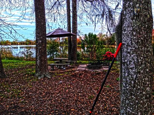 Raking Leaves At Lake George Georgia