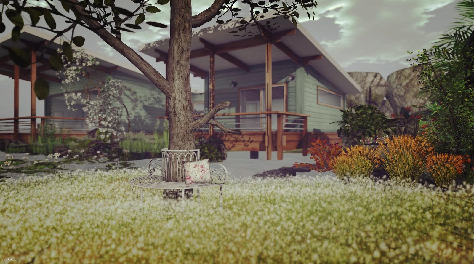 Home & Garden Therapy # 466