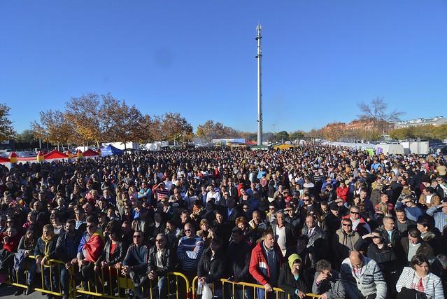 Ziua Națională a României 29 noiembrie 2015