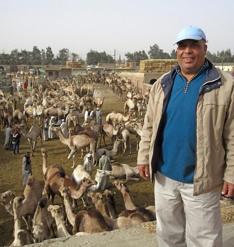 CamelMarket1-06