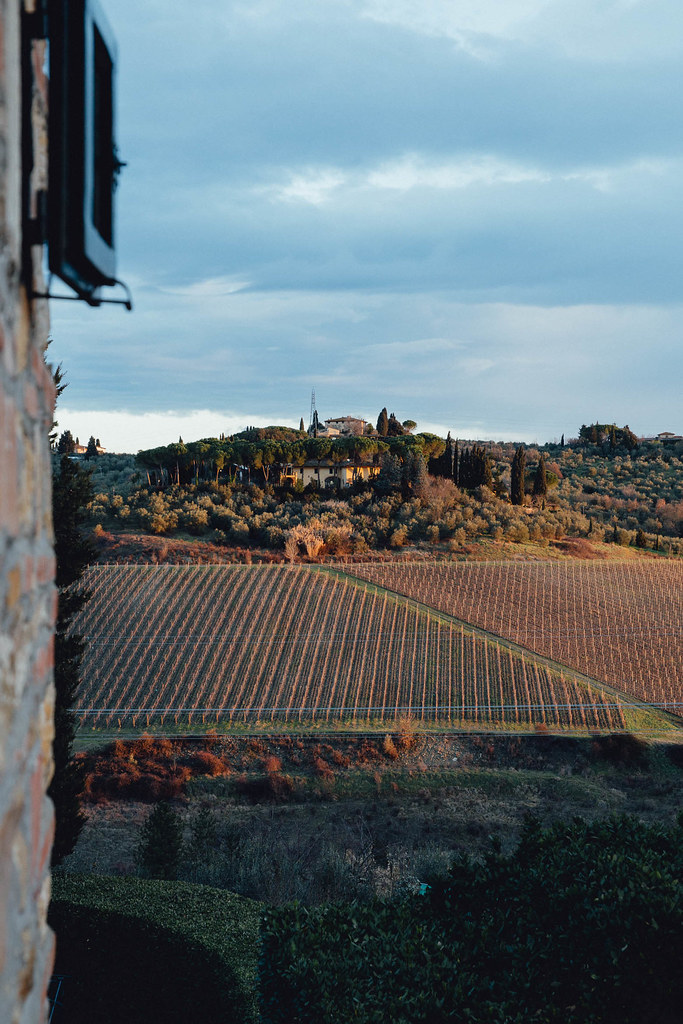 Morning View from Al Quercia Estate in Impruneta, Tuscany | Cashew Kitchen