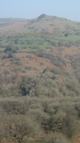 Luckey Tor, below Sharp Tor