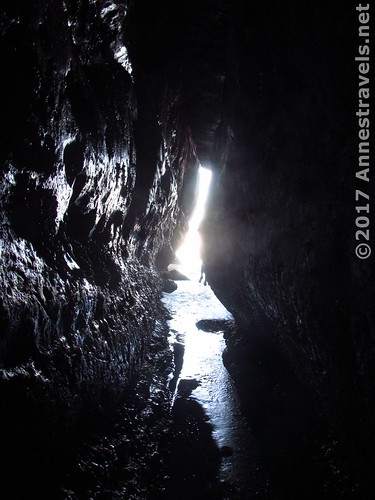 Inside the sea cave near the Punchbowl, Oregon