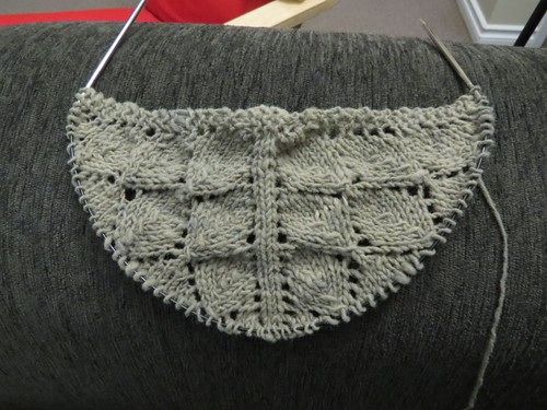wip: Lonely Treens Shawl