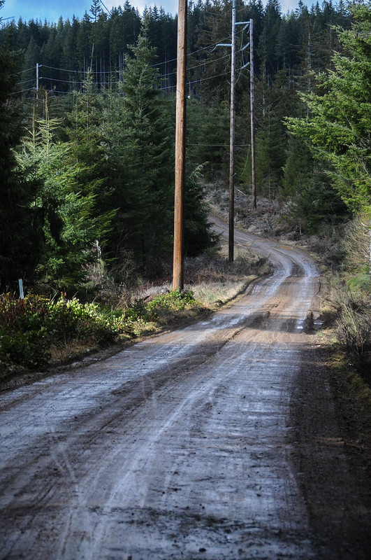 Timber Logjam-34.jpg